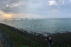 Driftduiken bij de Zeelandbrug